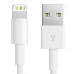 Apple Lightning to USB Cable (iPhone 5, iPad mini, iPad retina) (Copy)