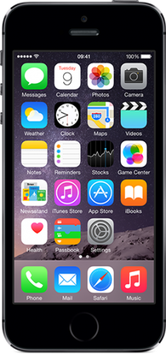 Apple iPhone 5S 32Gb (Space Gray)