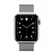 Apple Watch Series 5 Edition 40mm Titanium Case with Milanese Loop (MWQE2)