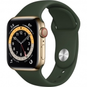 Apple Watch Series 6 GPS + Cellular 40mm Gold Stainless Steel Case w. Cyprus Green Sport B. (M02W3)