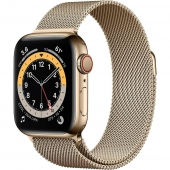 Apple Watch Series 6 GPS + Cellular 40mm Gold Stainless Steel Case w. Gold Milanese L. (M02X3)